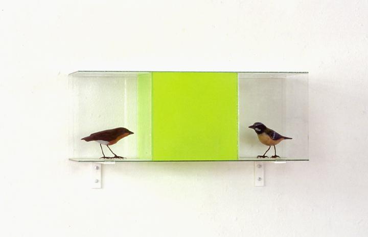 Zonder titel, fluorescerende verf op glas, objecten, 40x15x15,5 cm, 1989