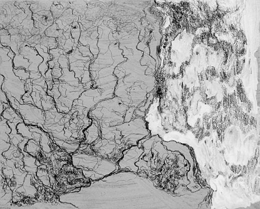 Geboorte van de gezichten, acrylverf, potlood en inkt op papier, 20x16 cm, 1994