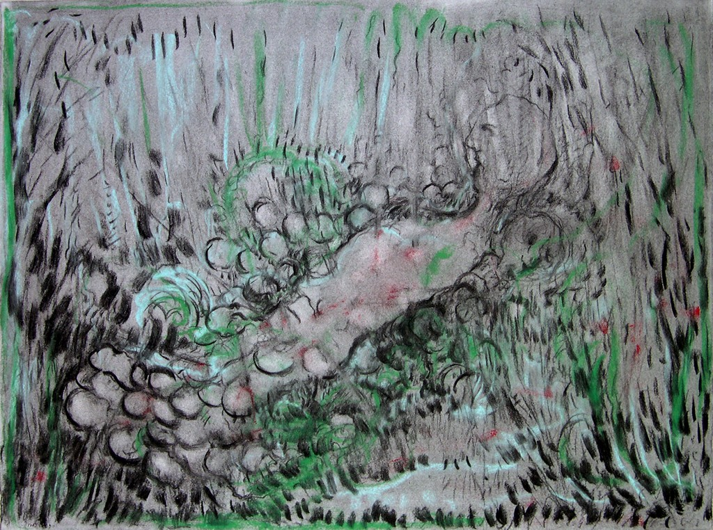 Strange ways of happiness, houtskool en pastel op papier, 78x57 cm, 2009
