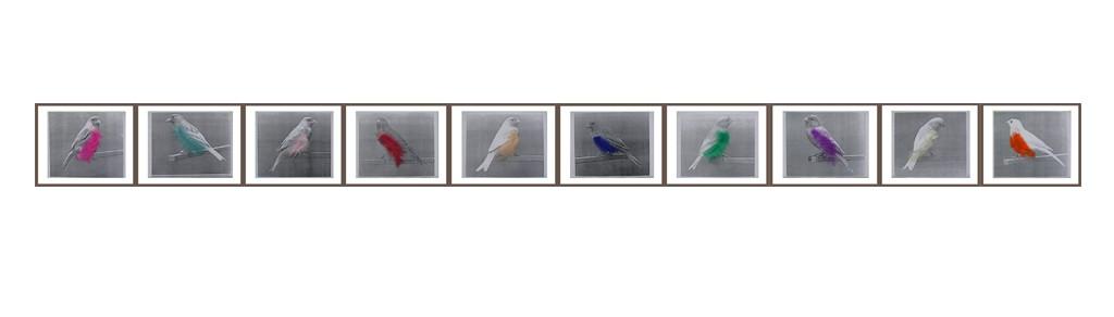 Memory Lane, zwartwit kopie en veertjes, 400x30 cm, 1990
