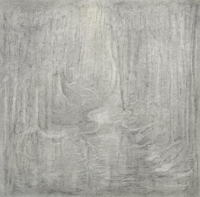 Bos, houtskooltekening op etspapier, 50 x 50cm, 2018
